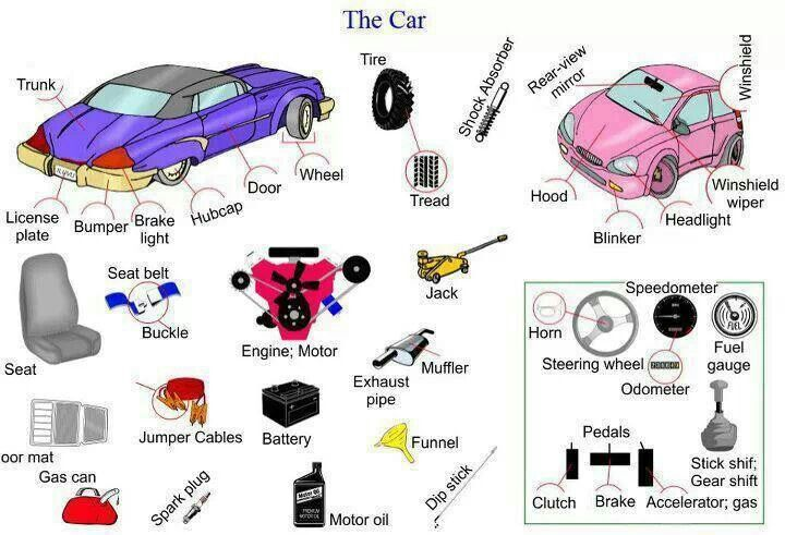Parts of car | Easy learning : Animals Chart - Wild Animals names ...