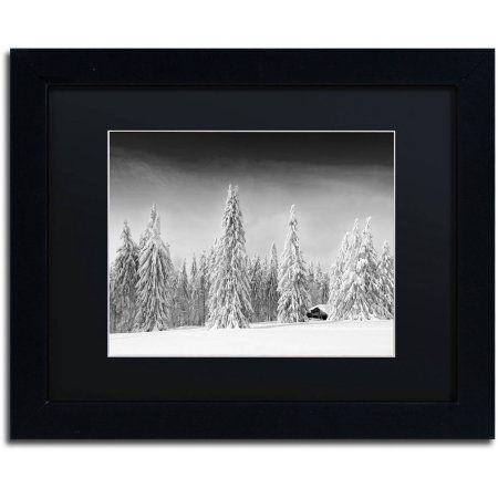 Trademark Fine Art White World Canvas Art by Philippe Sainte-Laudy, Black Matte, Black Frame, Size: 11 x 14, White
