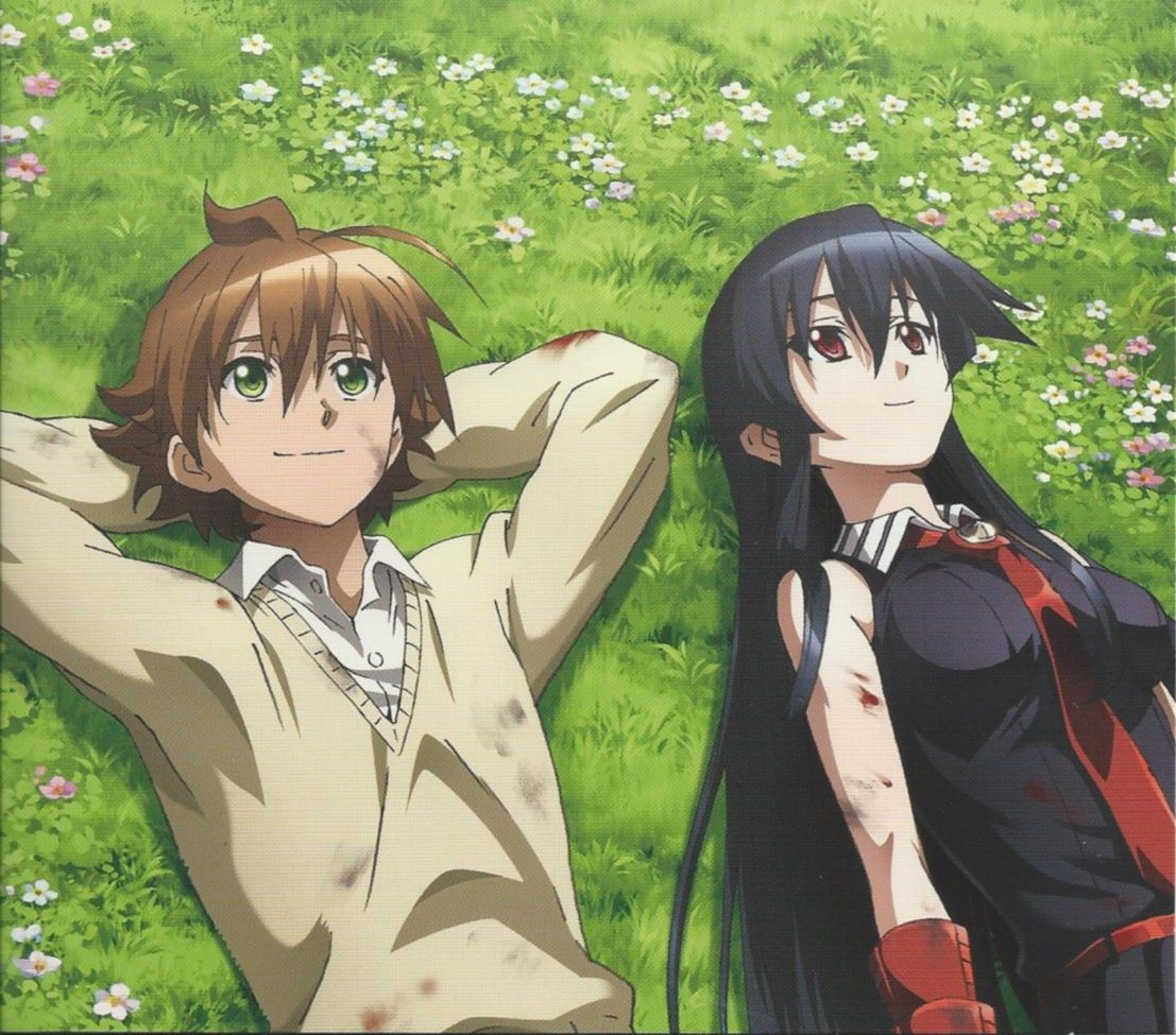 Akame ga kill i thought they were somehow going to be