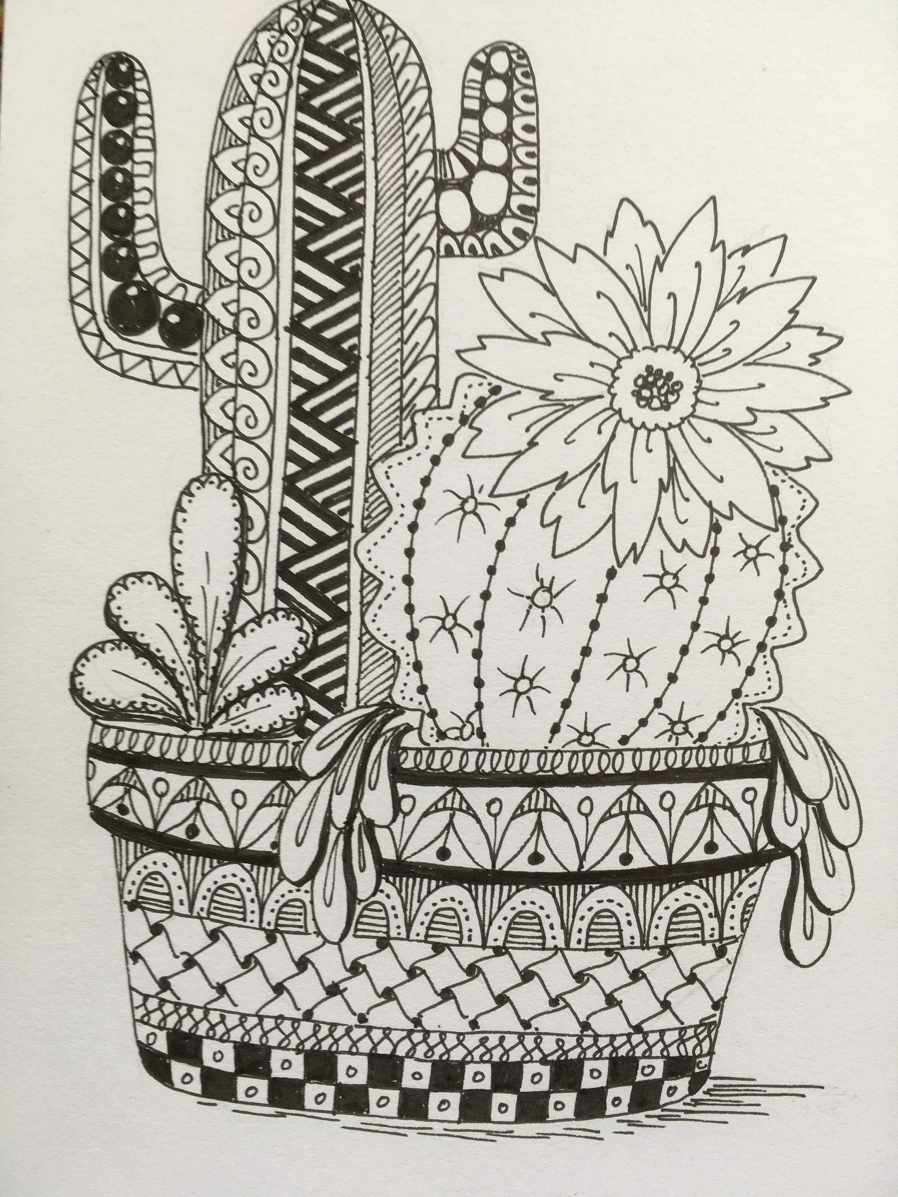 Cactus Cactus Art Zentangle Drawings Whimsical Art