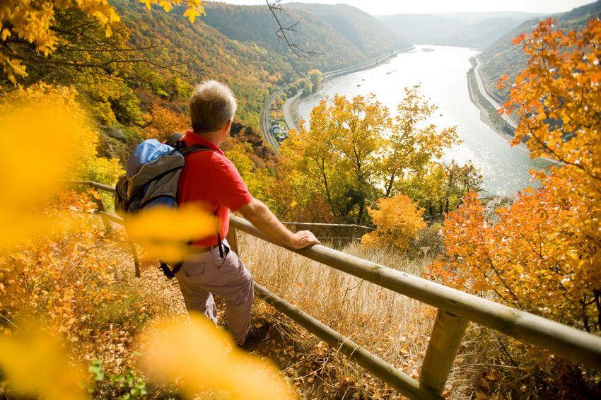 Hiking Rudesheim Am Rhein Kulturlandschaft Rheine
