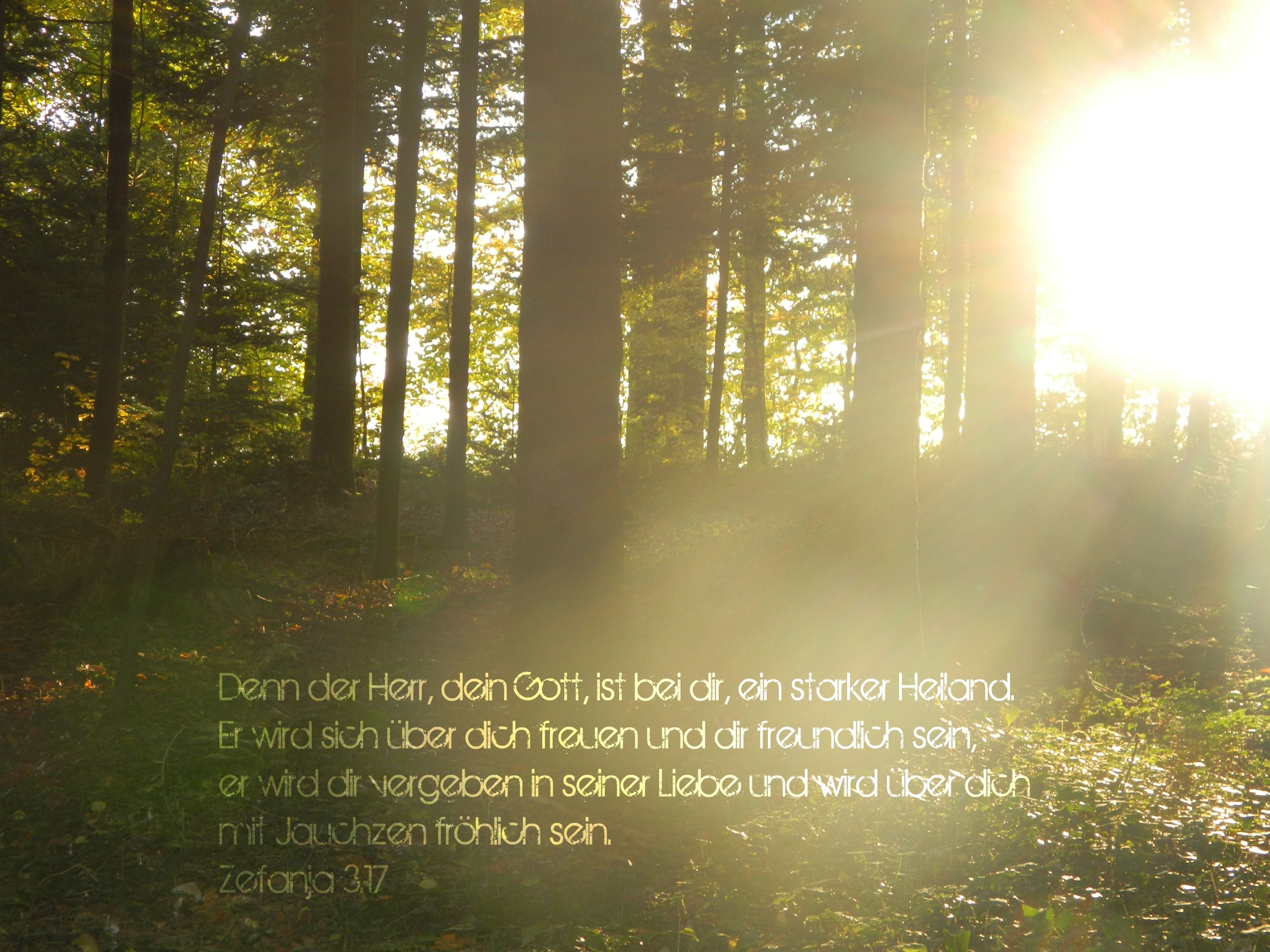 Zefanja 3,17