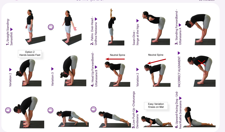 Find Your Zen with Yoga for Beginners Hatha yoga poses