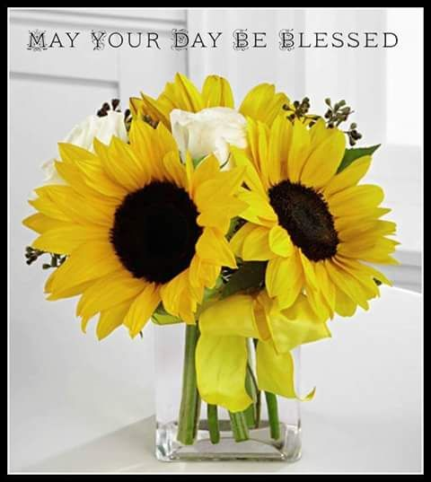 may your day be blessed sunflower art fall decor plants on sweet dreams for your home plants decoration precautions and options id=58465
