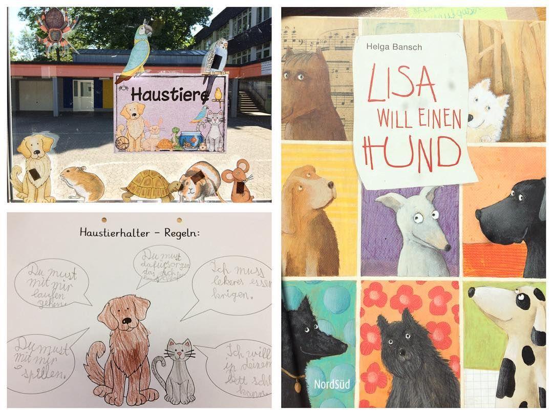 Haustierhaltungs Regeln Mit Dem Kinderbuch Lisa Will Einen Hund Haben Wir Heute Regeln Erarbeitet Die Ein Tierhalter Erfullen Schulhund Haustiere Hunde