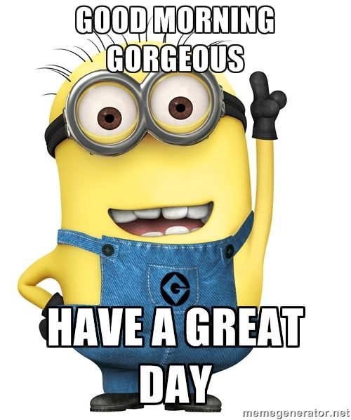 Good Morning Humor Images : Good morning gorgeous have a great day despicable me minion love pinterest humor