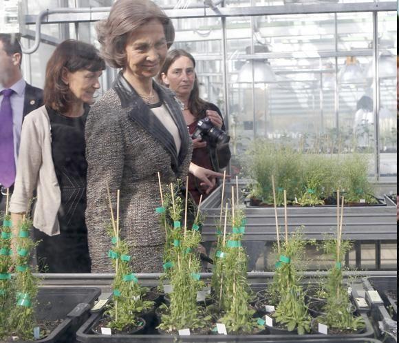 La reina Sofía visita el Centro Nacional de Biotecnología #queen #spain #casareal #realeza #royals
