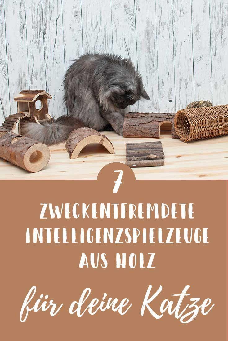 Zweckentfremdet: Intelligenzspielzeug aus Holz für deine Katze - ideal für Katzen Trockenfutter von Almo Nature - Zucker und Zimt Design #katzengeburtstag