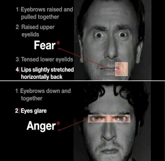 Fear, Anger Expressions