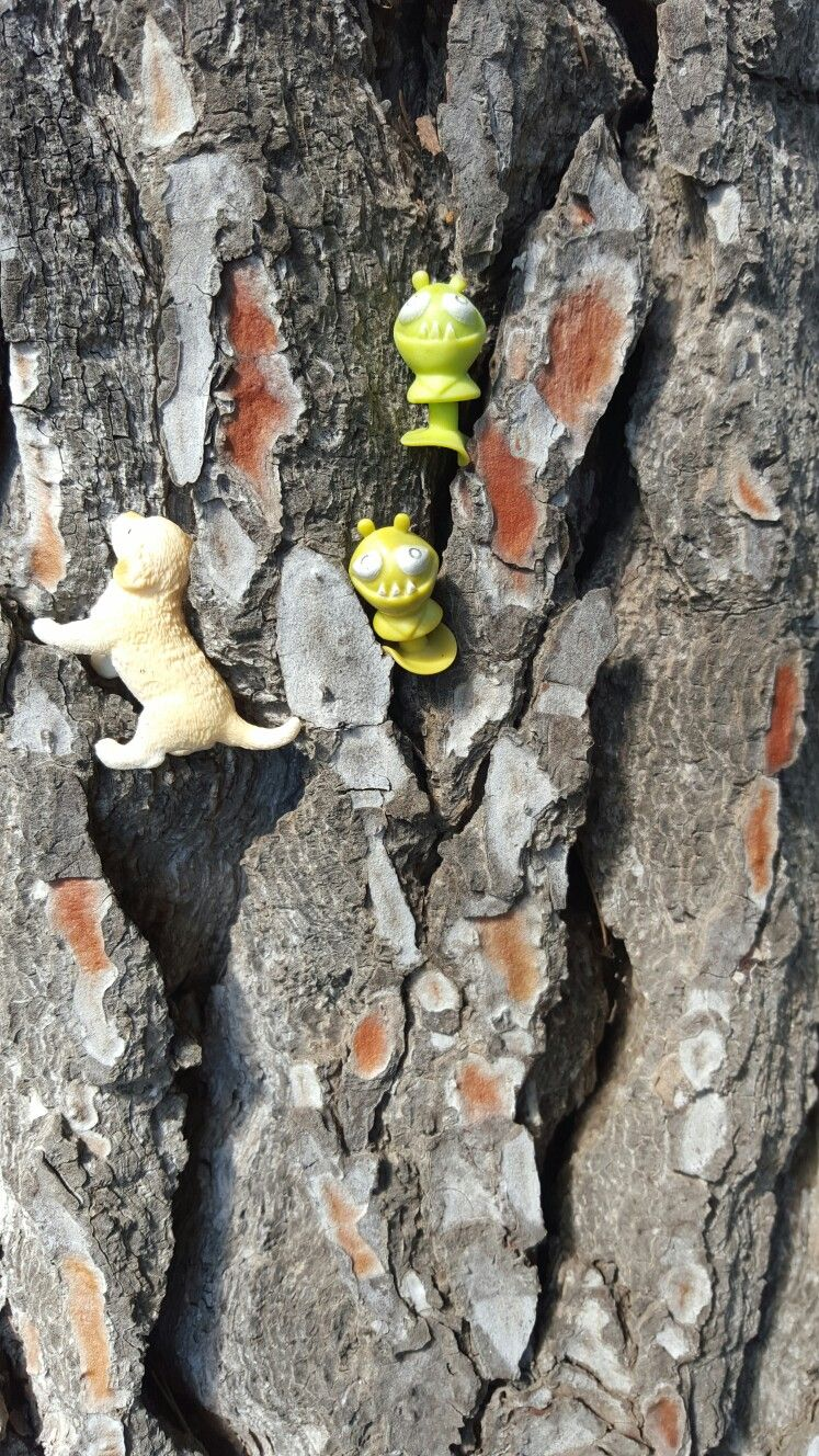 Aliens and Boots climbing trees