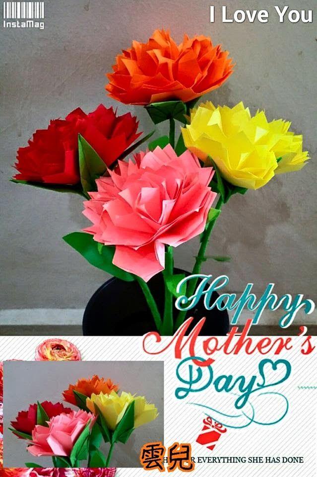 2 carnation 2 carnation mightylinksfo Images