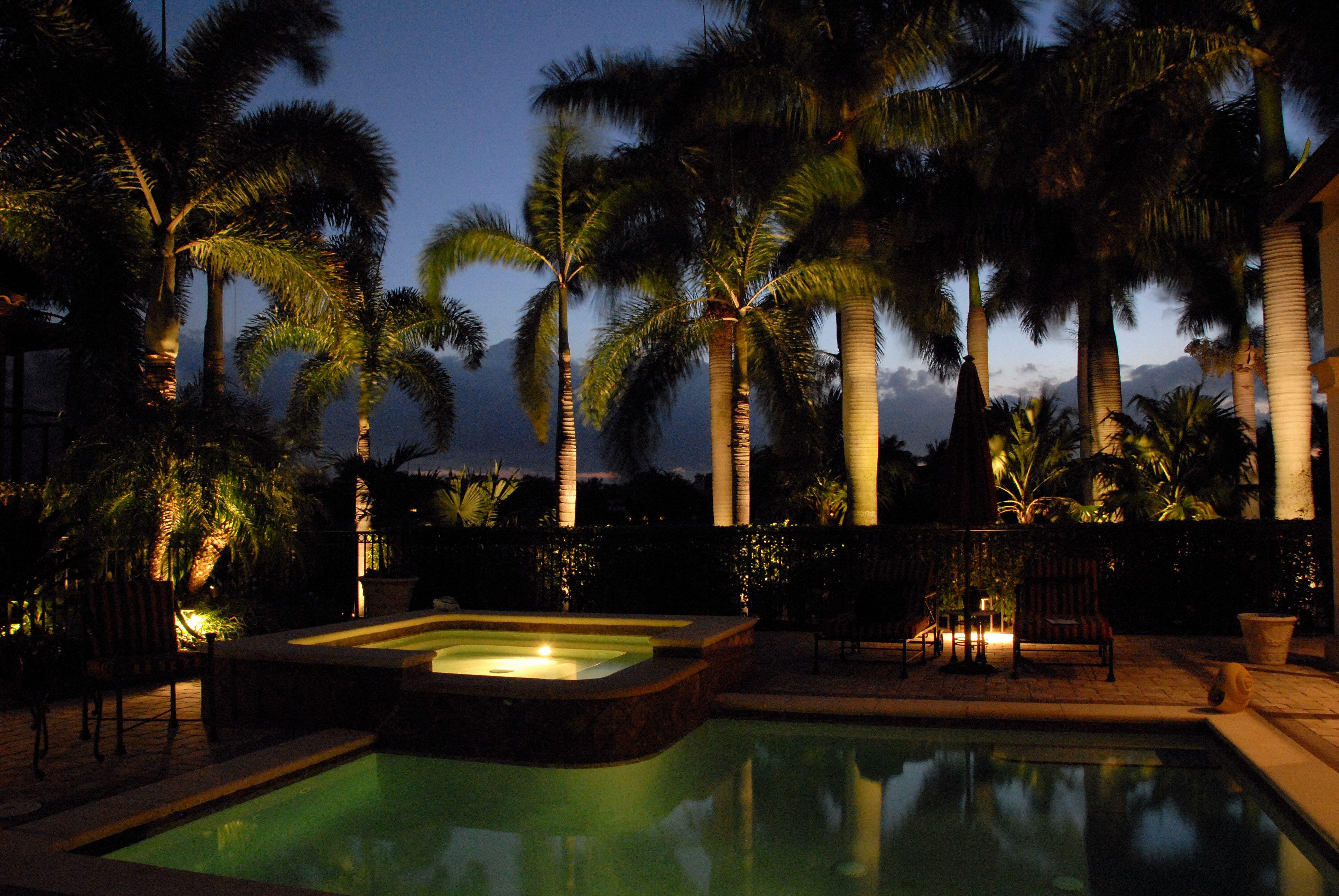 Palm tree lighting in Naples, FL - how to properly light ... on Palm Tree Backyard Ideas id=49759