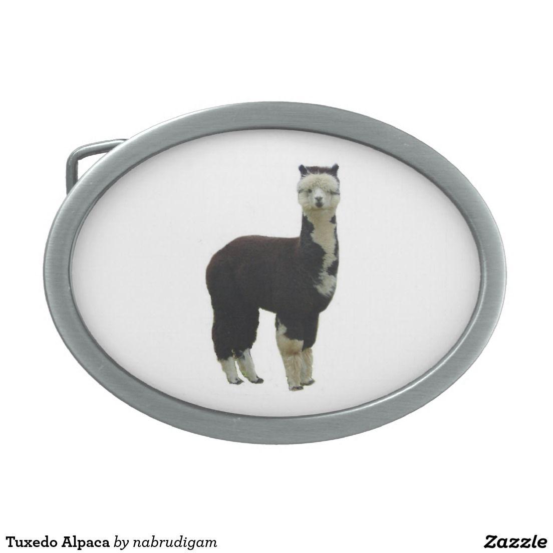 Tuxedo Alpaca Belt Buckle