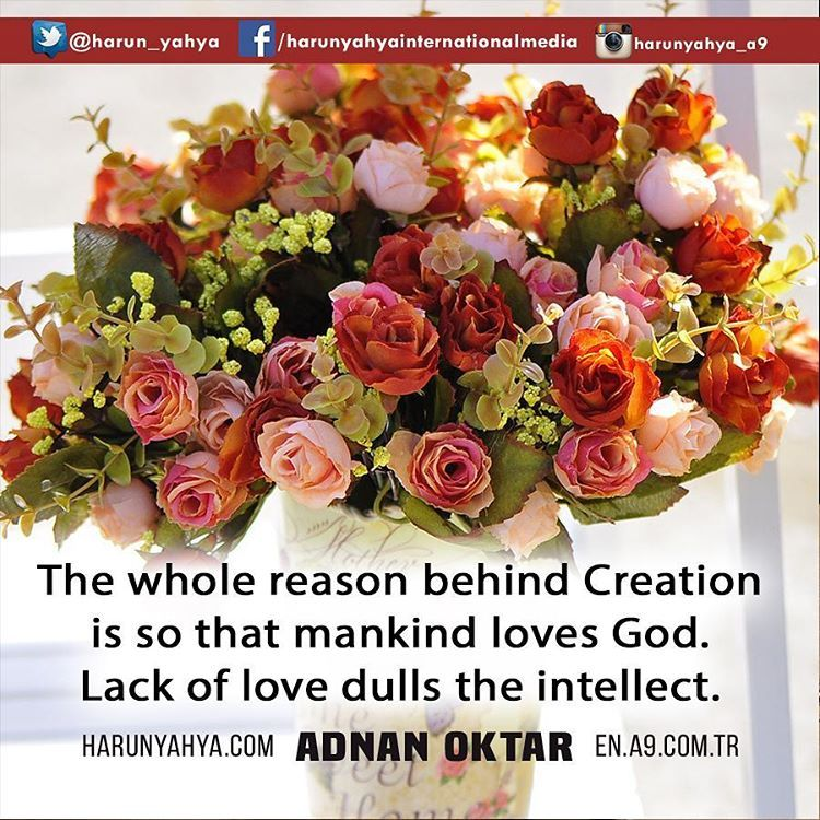The whole reason behind creation is so that mankind loves God.   #tv #broadcast 📽📡en.a9.com.tr #islam #God #quran #Muslim #books #adnanoktar #istanbul #islamicquote #quoteoftheday #quote #love #Turkey #art#artistic #fashion #music #luxury#travel #nature #photoshoot #photooftheday #worldwide #london #newyork #washington