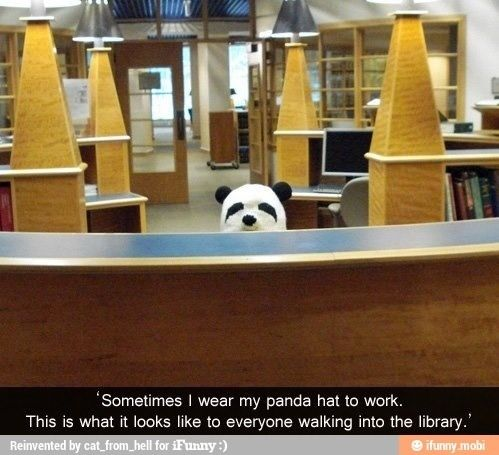 Panda hat library what you see