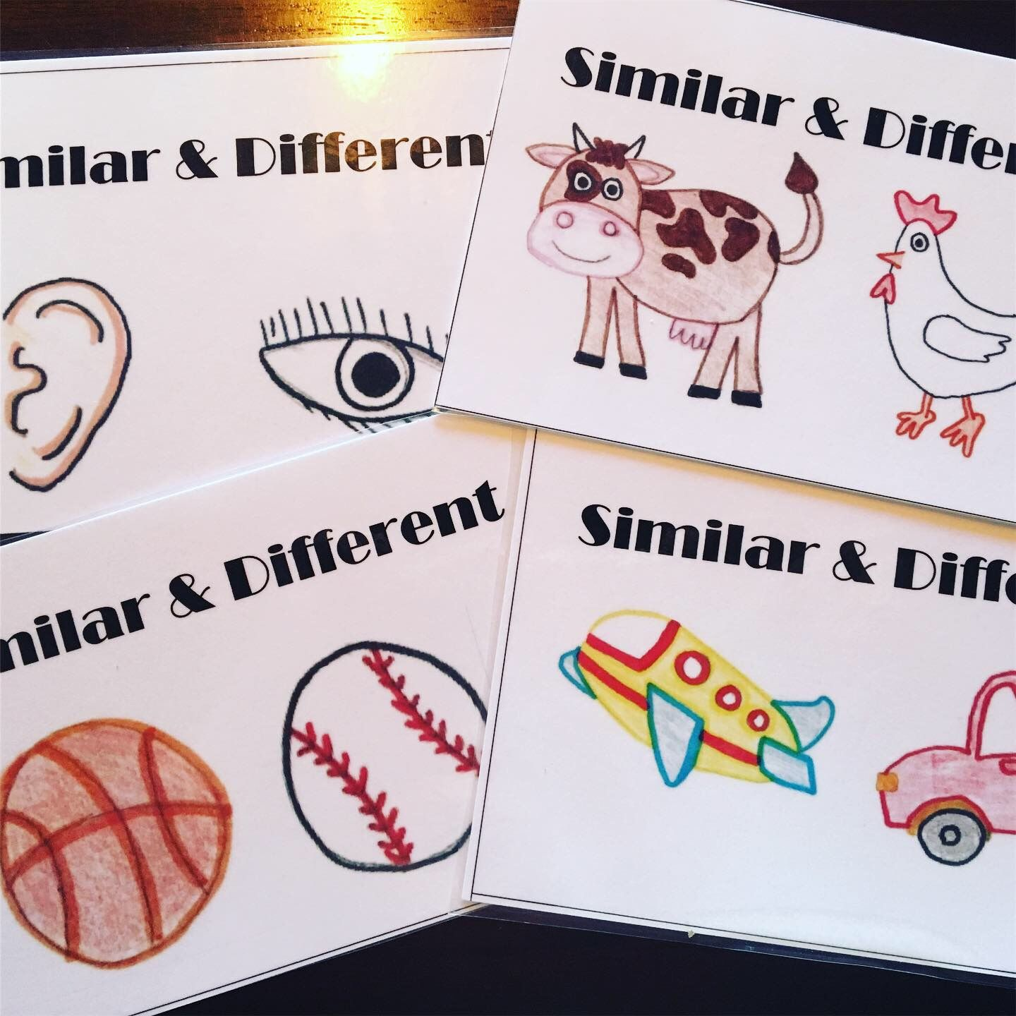Similarity And Difference Cards Free