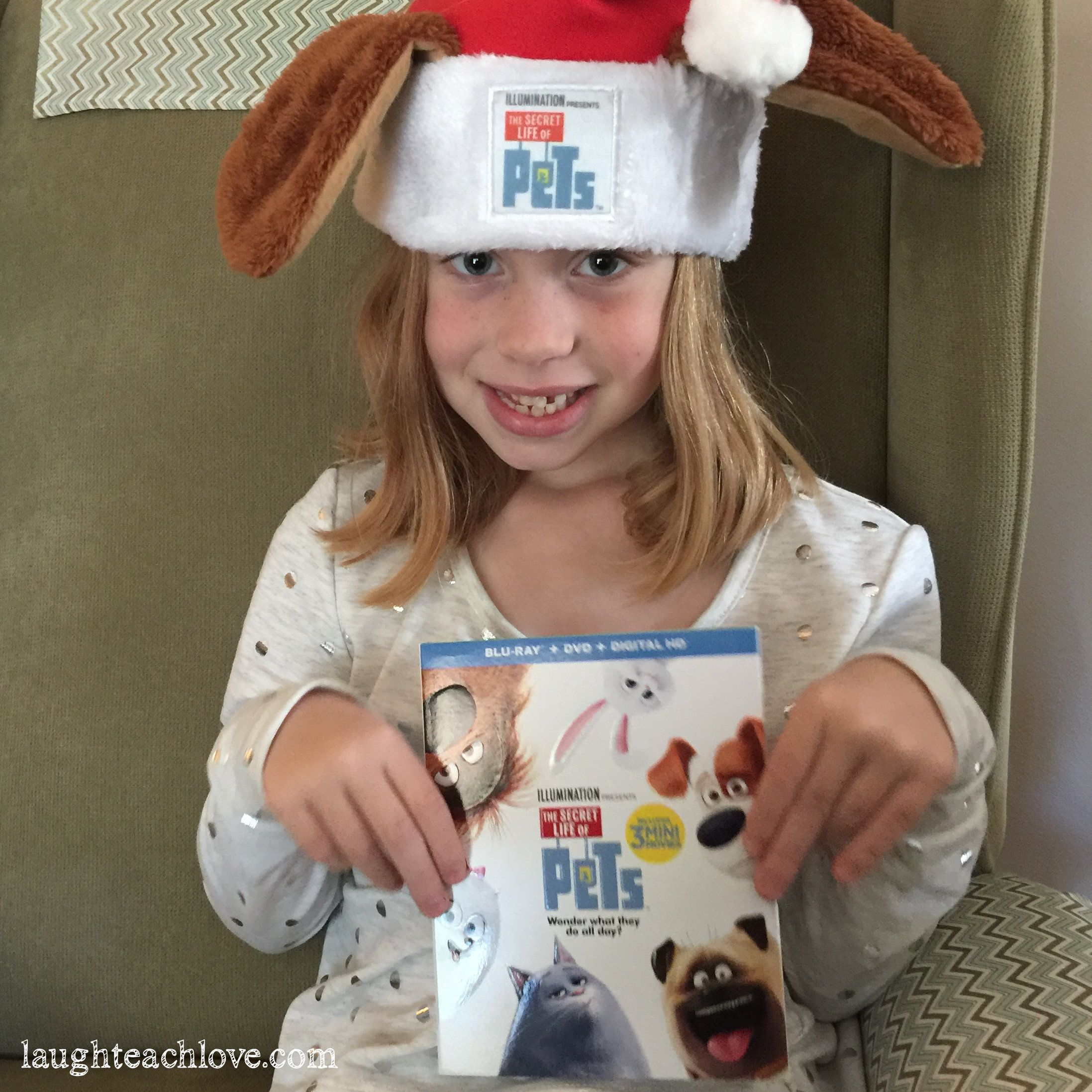 nice Giveaway - Secret Life of Pets DVD/Blu-ray! Ends 12/19/2016