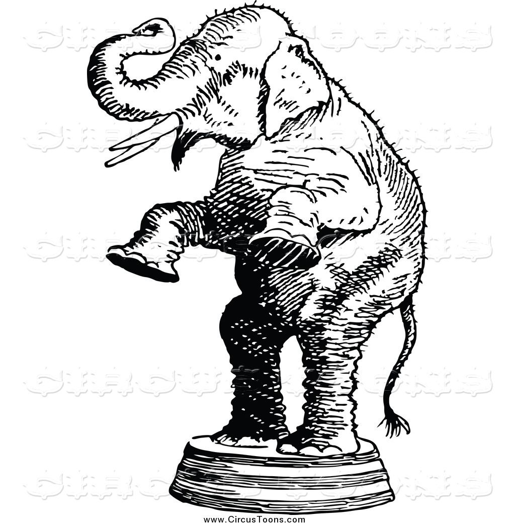 Circus Clipart of a Black and White Standing Elephant ...