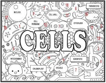 life science cells coloring pages - photo#31