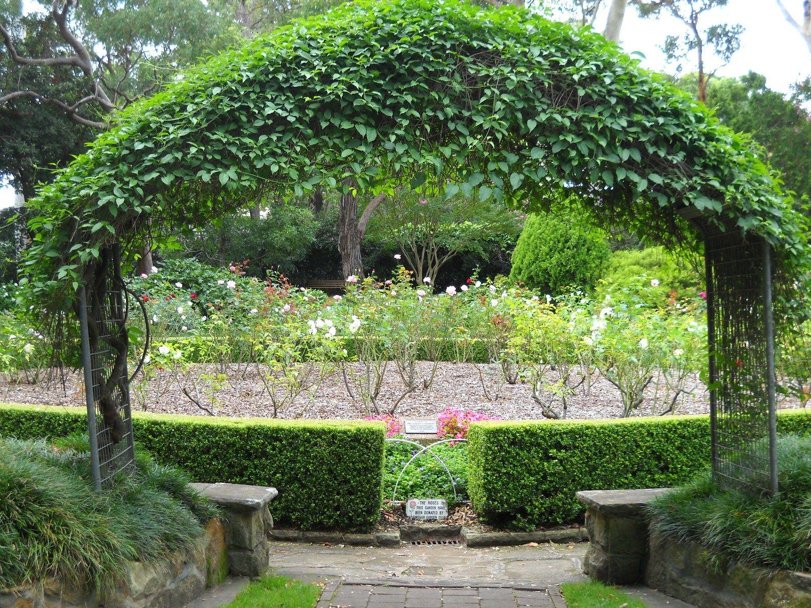 Camellia Gardens Garden Parks In Sydney Garden Arch