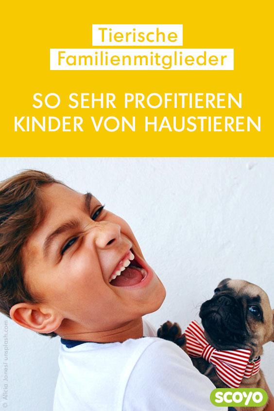 Haustiere für Kinder Das lernen die Kleinen mit einem