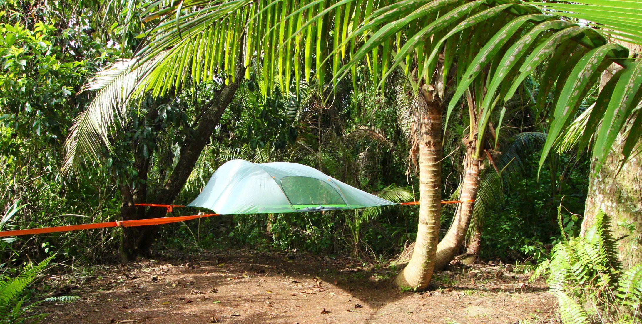 The incredible treetop Eco village in Fiji. Explore, Dream ...