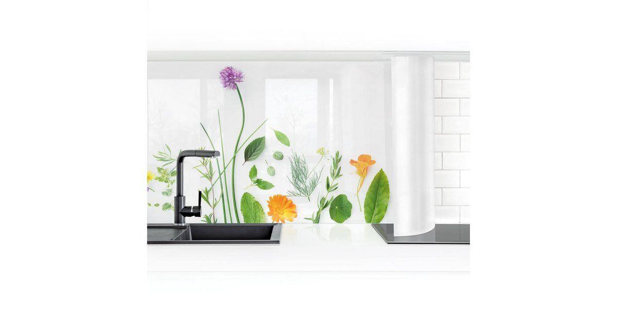 Bilderwelten Küchenrückwand »Kräute