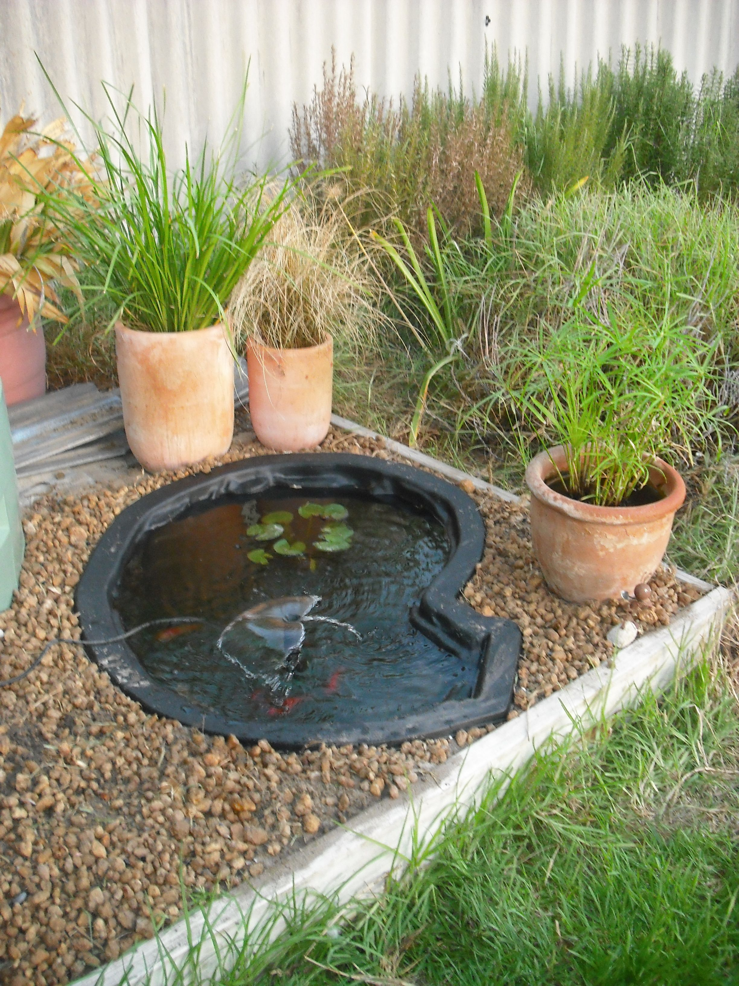 Fish pond garden pond edging stones fish pond plants for for Small yard ponds
