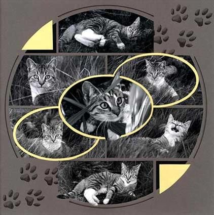 Lovely stained glass patterned pet page. The paw prints are a cute touch.