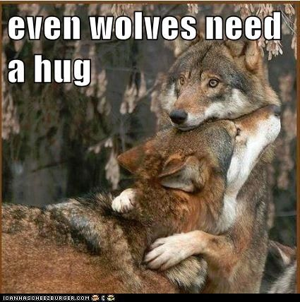Wolf two