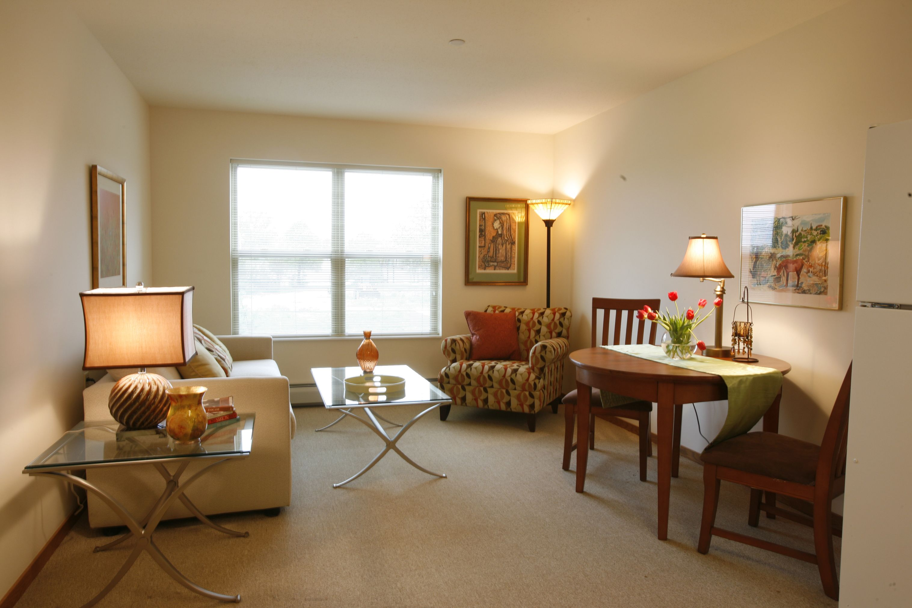 Assisted Living Apartment Models - Google Search