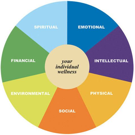 Holistic approach    | school counsellor office | Wellness