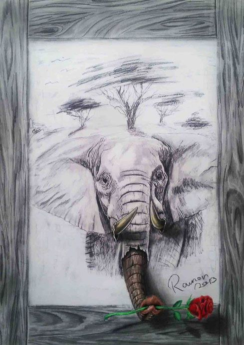 3d drawing of elephant illusion drawings amazing art creative superb pencil elephant animal africa