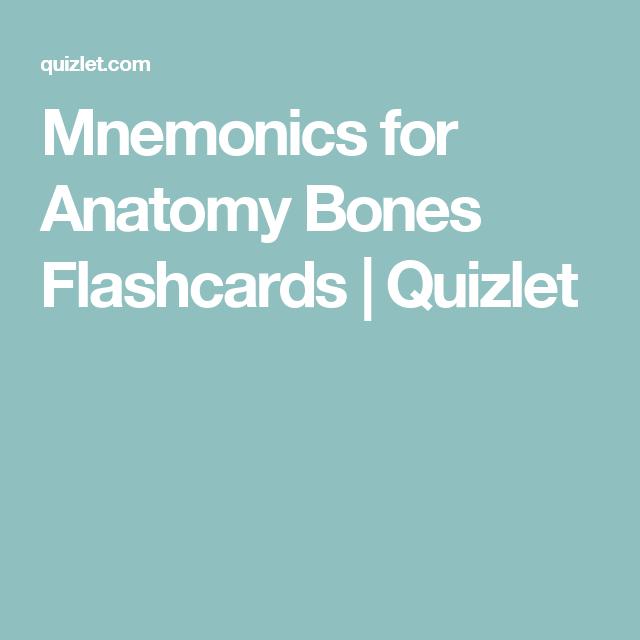 Mnemonics For Anatomy Bones Flashcards Quizlet Work Pinterest