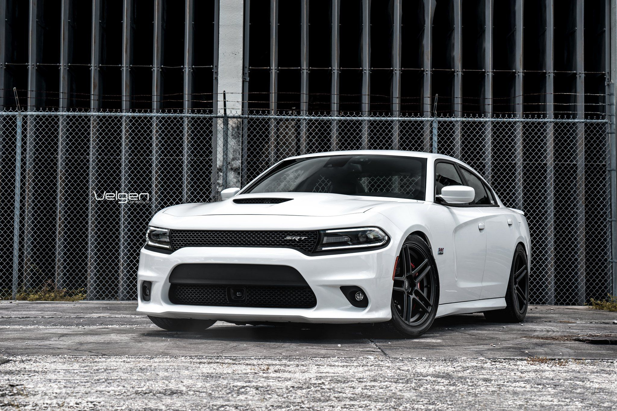 Amazing Muscle Customized White Dodge Charger Srt Dodge Charger Srt Dodge Charger Charger Srt