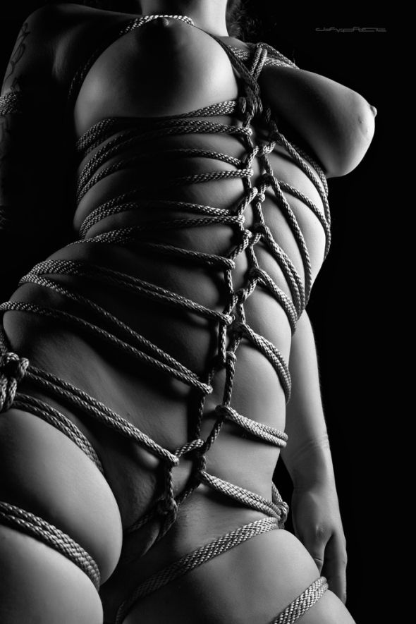 Image Result For Shibari Shibari Pinterest
