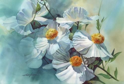 Matilaja Poppies Jan Kunz Floral Painting Flower Painting