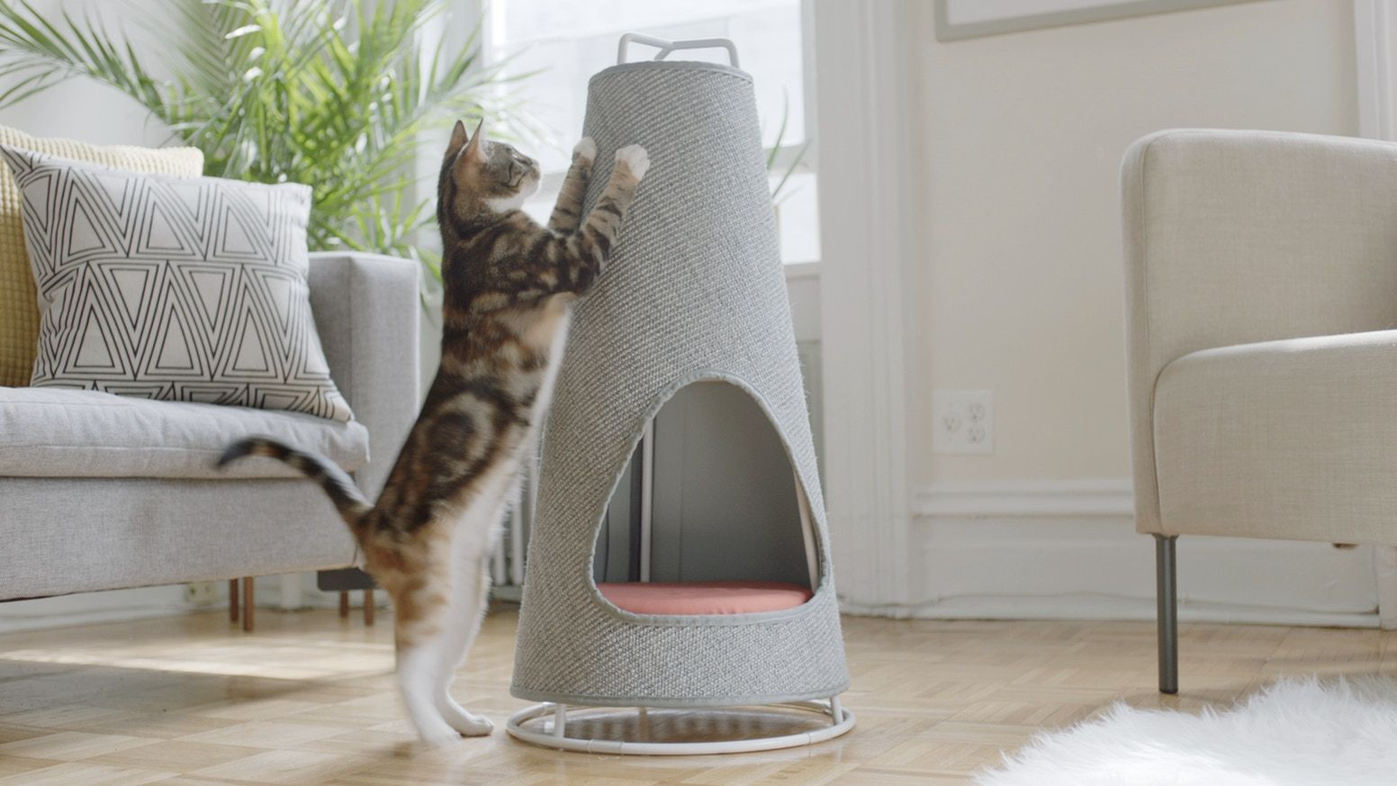 Introducing The Cone A New Modern Scratching Post And Nap Space