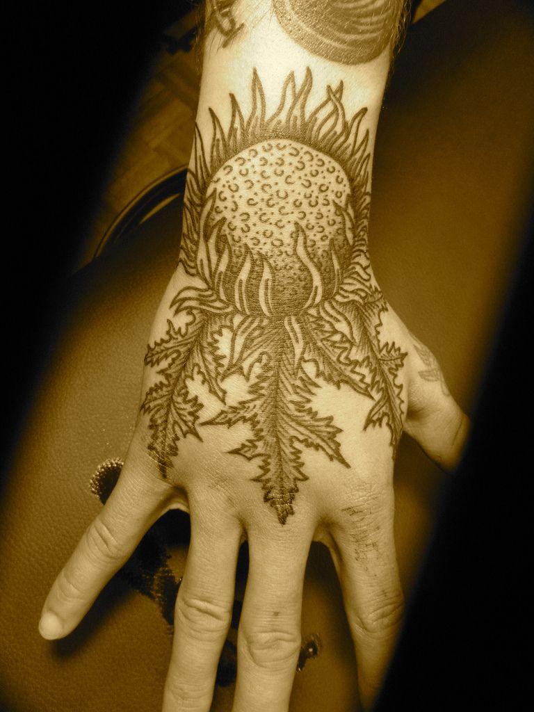 thistle | Thistle tattoo, Scottish thistle tattoo, Tattoos