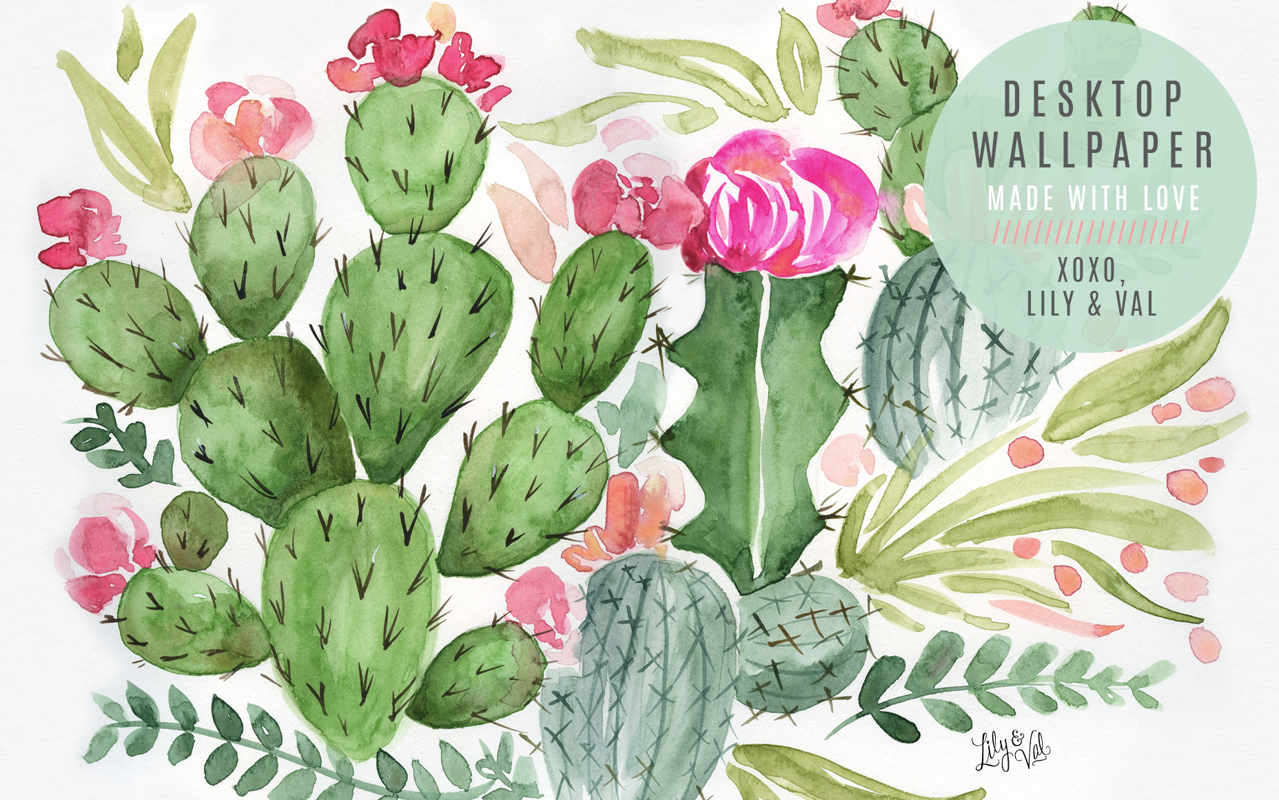 May's Cactus FREE Wallpaper Download Succulents