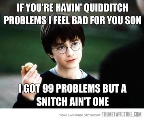 Quidditch Problems Harry Potter Jokes Harry Potter Quotes Harry Potter Funny
