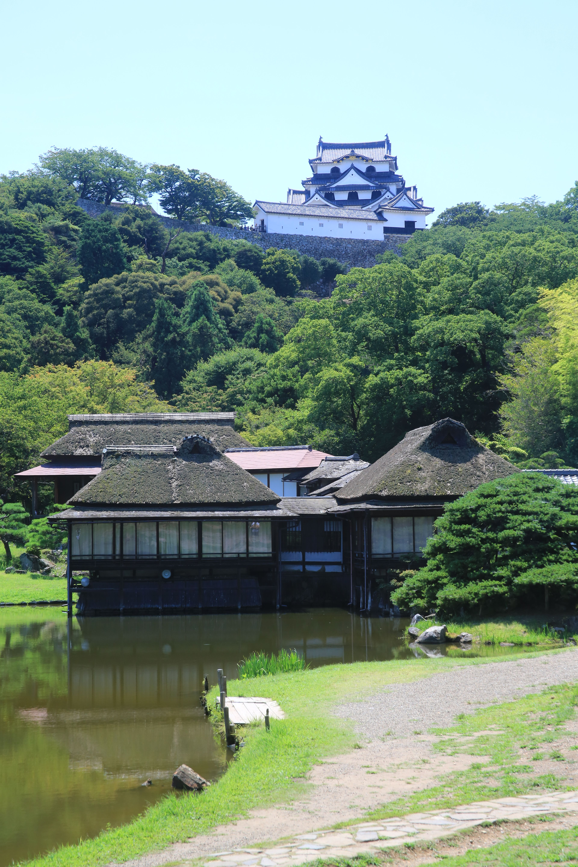 彦根城 Castle Hikone