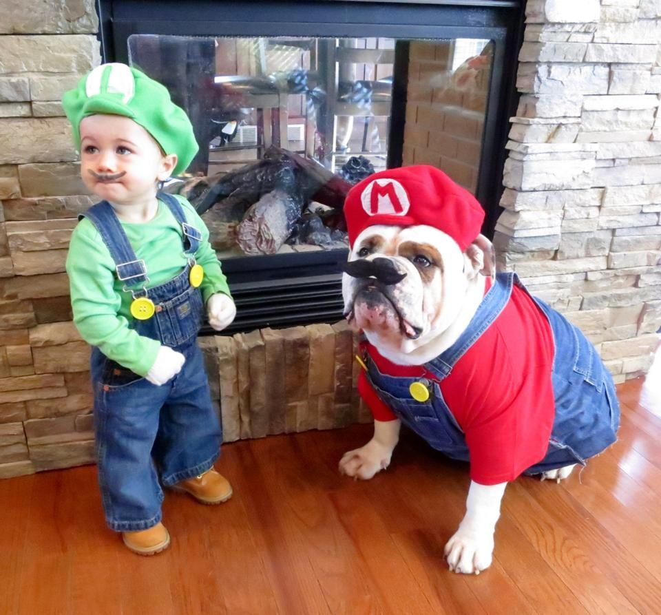 Super Mario Brothers Costume Dogs And Kids Bulldog Halloween
