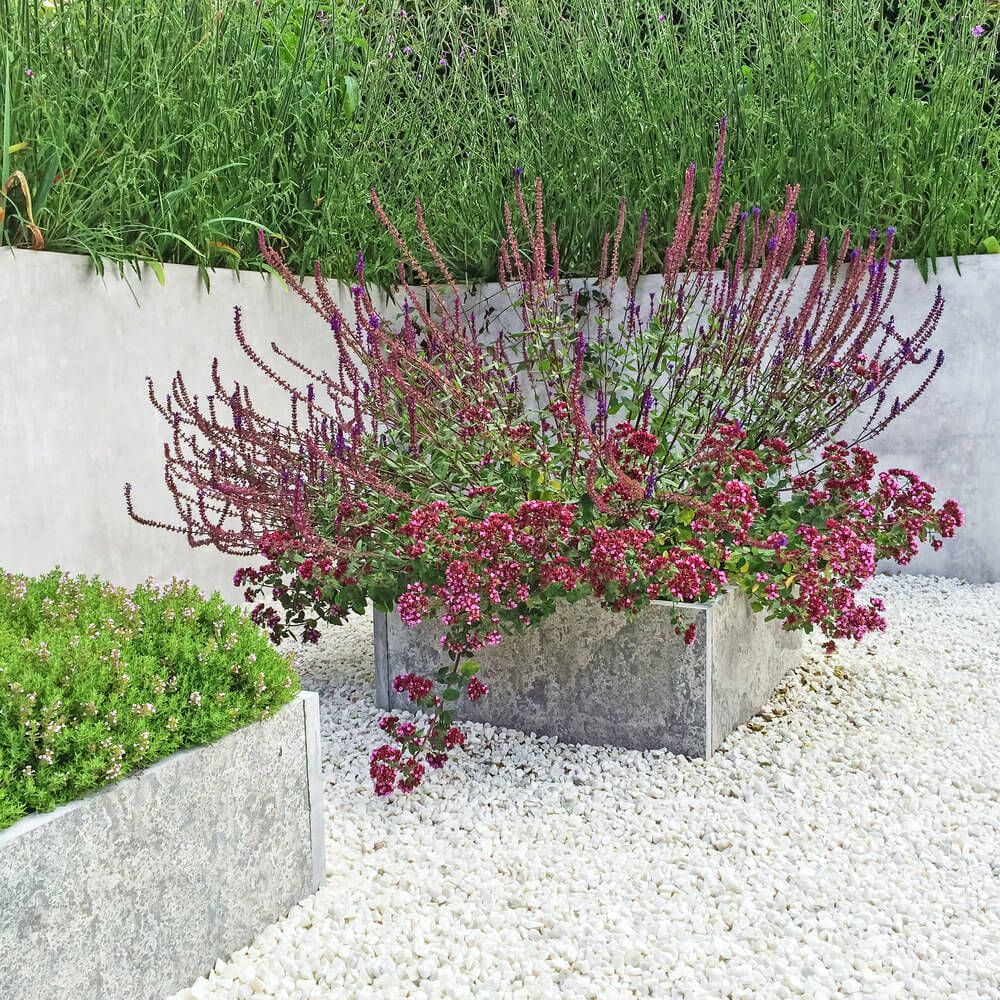 astonishing cement flower pots. Another example of a cement flower pot on white gravel patio 35 Patio  Potted Plant and Flower Ideas Creative Lovely Photos astonishing The Best 100 Astonishing Cement Pots Image Collections