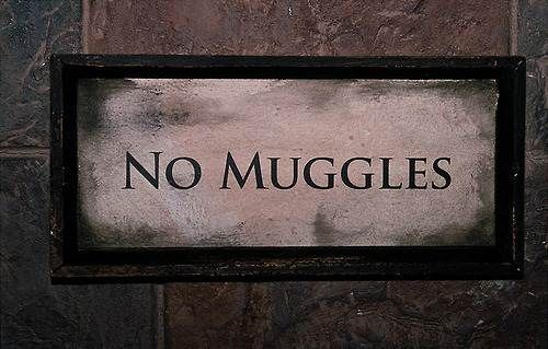 STAY AWAY FROM US MUGGLES!