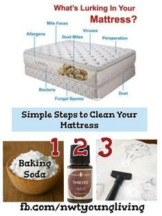 Baking Soda Eucalyptus Oil And A Hoover Rids Dust Mited Essential Oils Cleaning Living Essentials Oils Mattress Cleaning