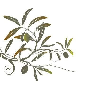 Keith S Page Friends N Christ Olive Tree Tattoos Olive Tattoo Olive Tree