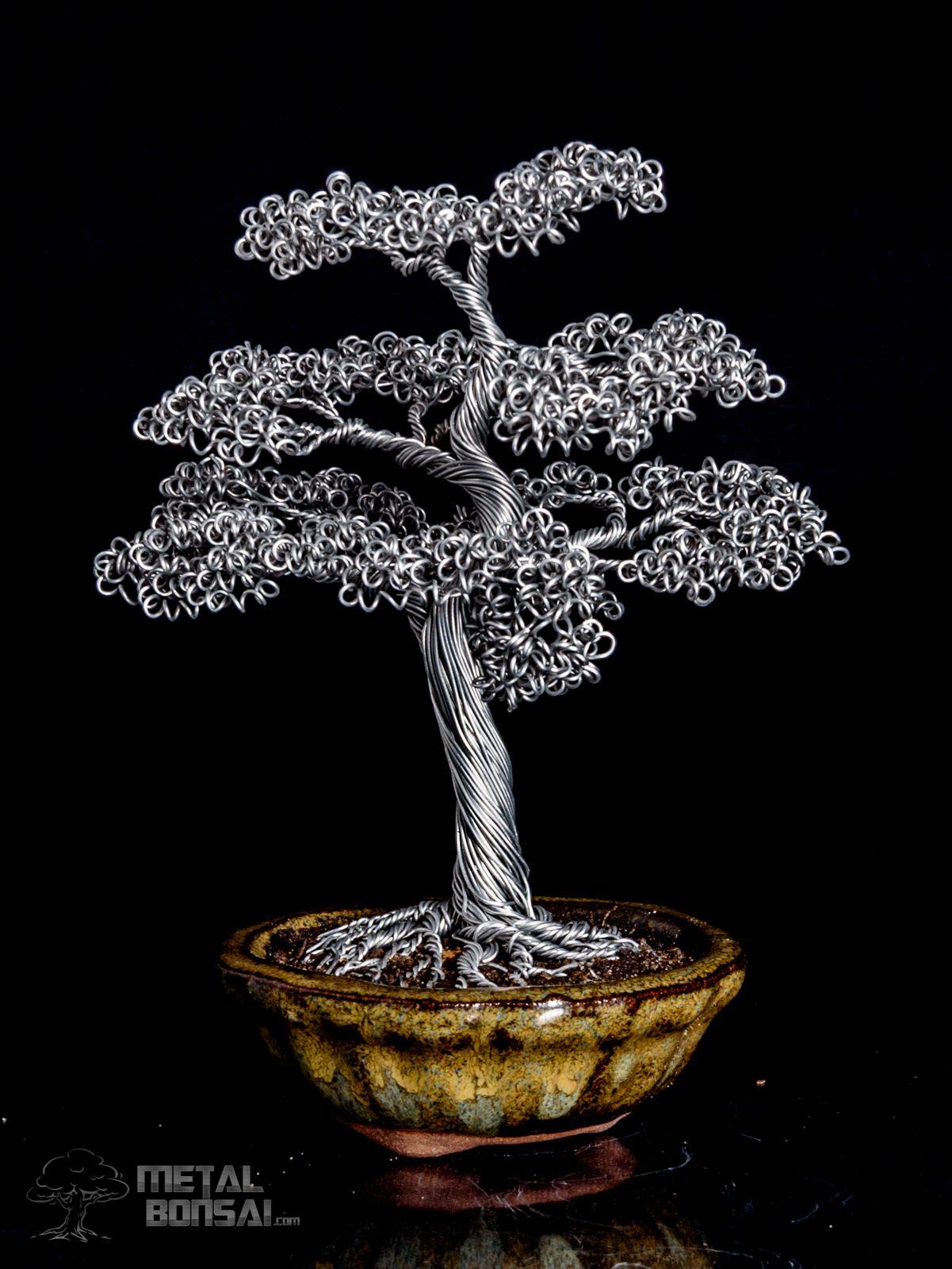 Metal Bonsai Tree : metal, bonsai, Informal, Upright, Moyogi, Bonsai, Sculpture, Sculpture,
