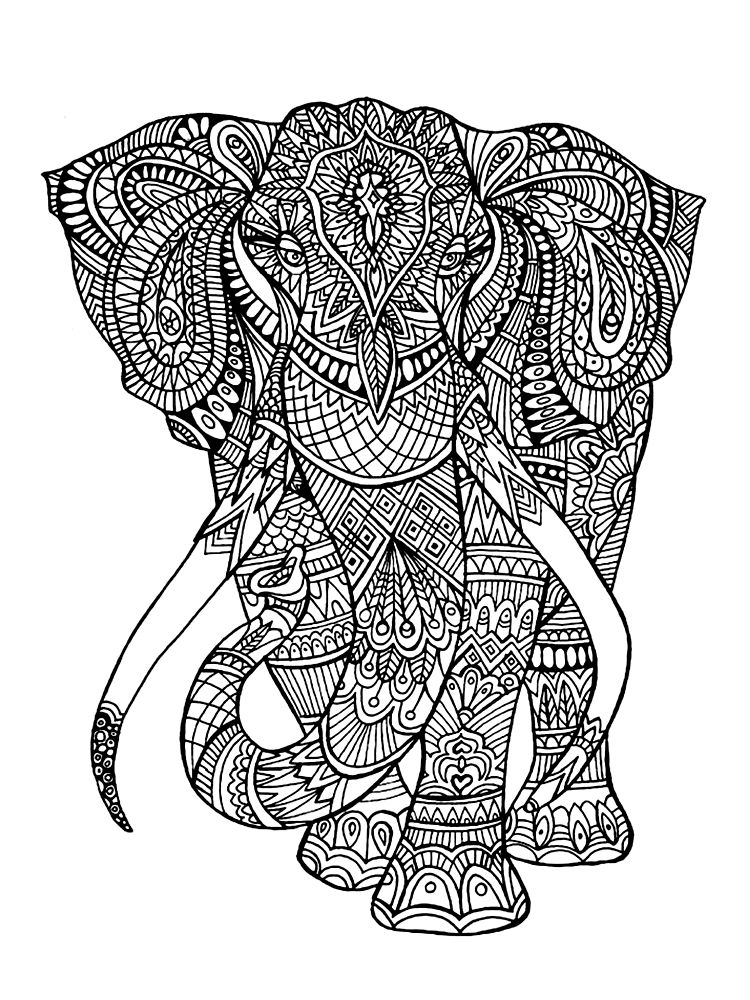 Coloring Book For Adults Elephant coloring page, Animal