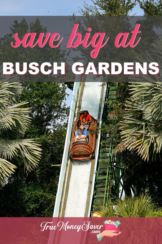 50e9b994a0b5cf159914f22c13dc931b - Buy One Get One Free Busch Gardens Tampa